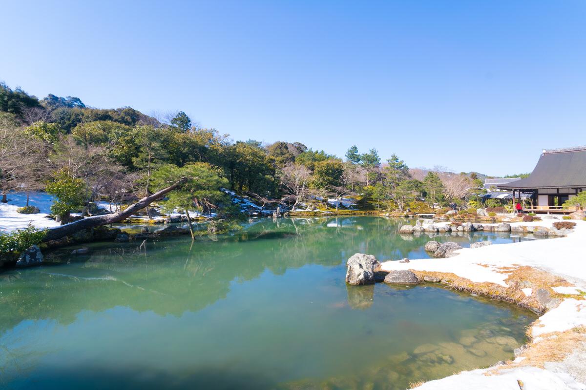 嵐山 天龍寺 庭園