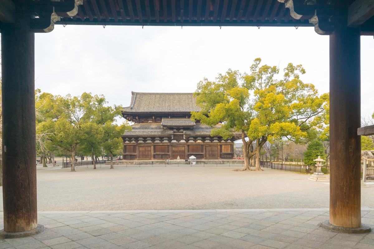 京都 南大門から金堂 東寺