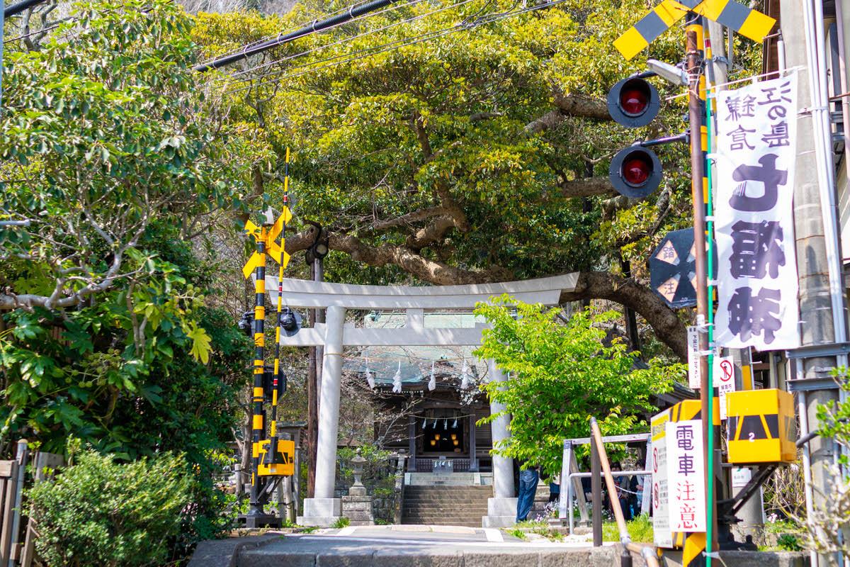 鎌倉 御霊神社 踏切