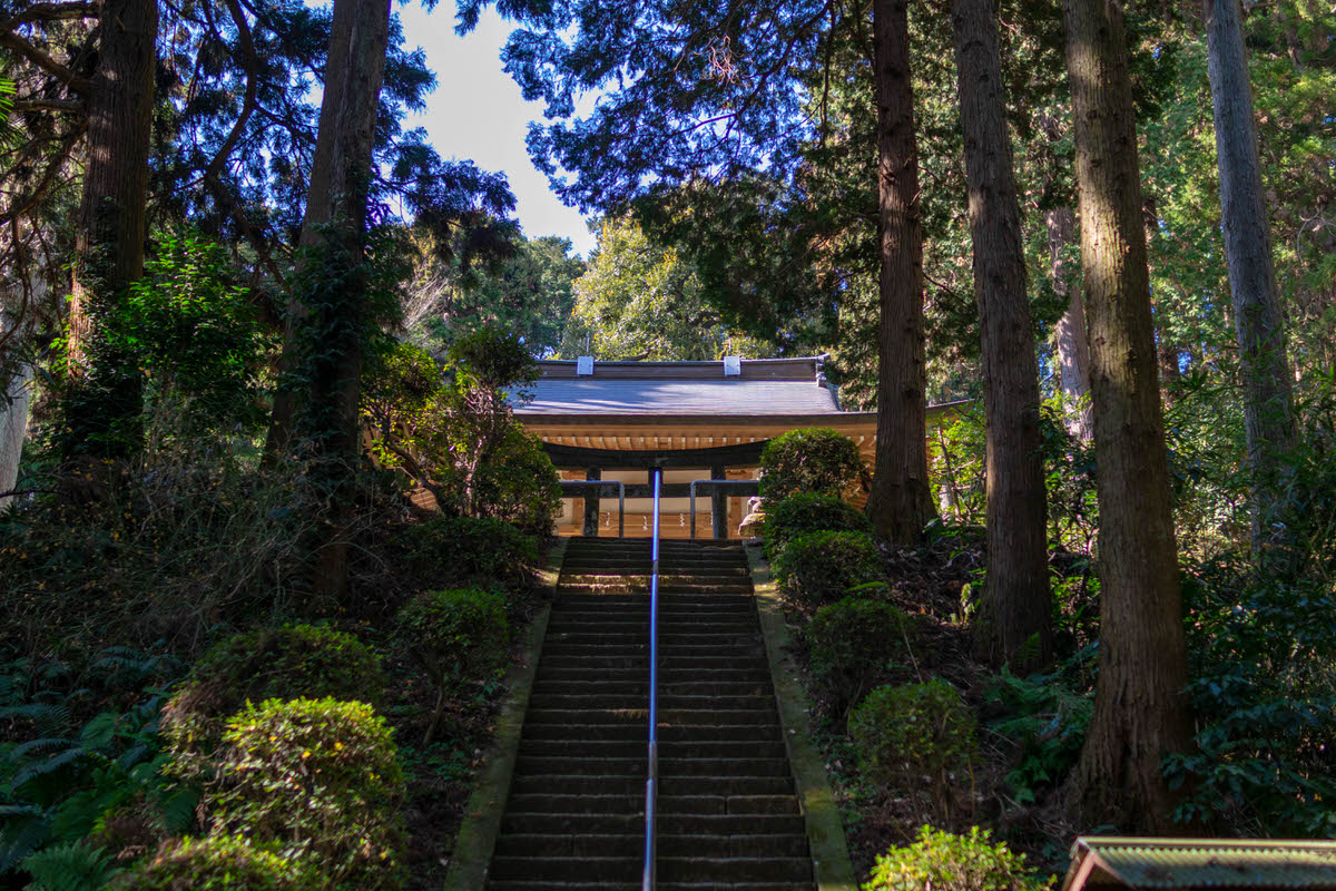 鎌倉切通 熊野神社